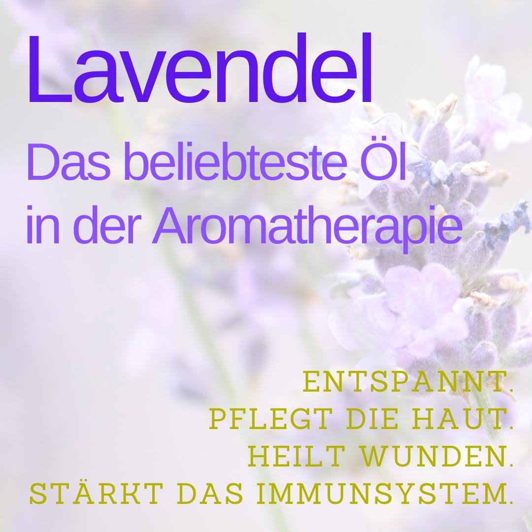 Lavendelöl, das beliebteste Öl in der Aromatherapie